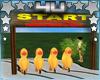 4U Yellow Duck Race