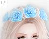 ☆. Blue Roses