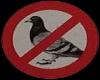 No Birds Sign Sticker