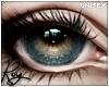 真の目 Lens