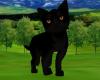Mz. Animated cat