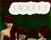 [FCS] Sacha V.5