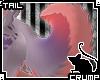 [C] Sorbet V.1 Tail