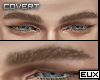 E' Brows | Dirt Blonde