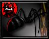 ~R Redback Spider 2