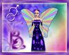 Bou Rainbow Bird Wings