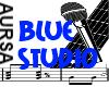 (1A)Blue Studio