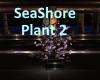[BD]SeaShorePlant2