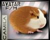 ! Hamster Avatar - Funny - Little