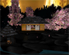 CherryBlossom Dojo