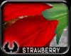 'cp Strawberry Flower