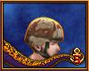PASGT Helmet 6 Desert