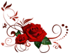 roses & swirls