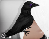 S: Crow