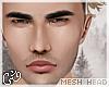 G`Ean Mesh .