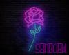 lSxl Neon Rose
