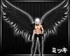 ! Nightshade Wings II