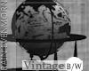 56' B&W Globe