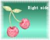 Cherries (Right HandSide