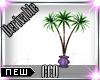 [CCQ]B:Palm Trees
