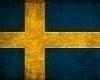 !swedish flag!