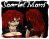 SYN-Moni-Scarlet