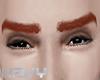 Ginger eyerbrows