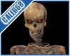 [cc] skeletal Avatar Pet