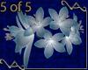 VA Blue Wedding Lily B