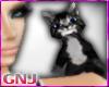 [GNJ] black cat