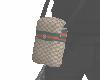 Pw/Gucci Bag