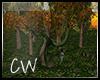 .CW.Love-Me.:TreeAnime:.