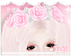 ♔ Roses Pink