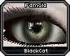 *.:.* BlackCat's Boutique UPDATED New Innocent Skin Set!! (3/18/10) *.:.* - Page 3 Images_83acae729b8dcfb1e956d09882731aad