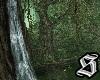 Nightfall Forest v2
