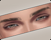 !! Theory S2 Eyebrows
