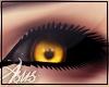 [Asus] Wolf Eyes
