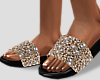 🔥 Pearl  Slides