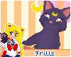 {F} Luna shoulder pet