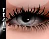 [P]Oval Eyes [Gray]