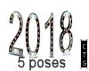 CTG 2018 NYE /5 POSES