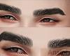 sk. Derivable Eyebrows