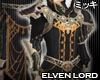 ! Elven Lord Coat III