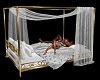 Lovers Brass Canopy Bed