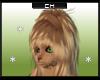 [CH] Roo Hair 2