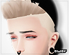 + Hair~Snap Blonde