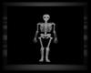 City Morg Skeleton