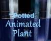 [BD]AnimatedPlant