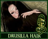 Drusilla Dark Brown