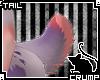 [C] Sorbet V.3 Tail